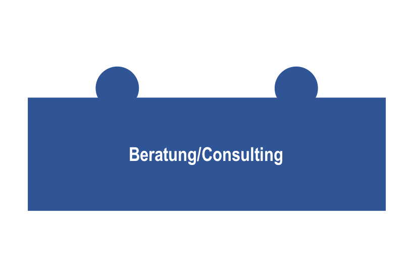 MSC Leistungsspektrum Beratung Consulting